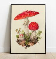 Mushroom WALL ART - Mushroom PRINT - Vintage Mushroom, Home Decor