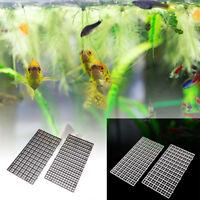 2x grille diviseur d'oeufs Caisse d'oeuf de poissons aquarium du fond Isolate