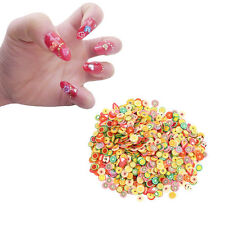1000Pcs DIY Fruit Fimo Polymer Clay Slices Nail Art Sticker Tip Decorations LY
