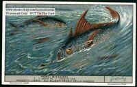 Opah or Moonfish 60+  Y/O Trade Ad  Card