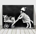 CUTE VINTAGE B&W Dog Pushing Kittens in Cart - CANVAS ART PRINT POSTER - 18x12""