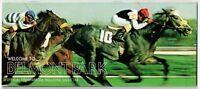AFFIRMED & SPECTACULAR BID IN 1979 JOCKEY CLUB GOLD CUP HORSE RACING PROGRAM!