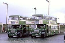 Aldershot & District 523/530 AAA523/530C Dennis Loline 6x4 Bus Photo Ref P124