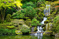 VLIES Fototapete-WALD- -Natur Wasserfall See Felsen Steine Fluss Bäume XXL 4193V