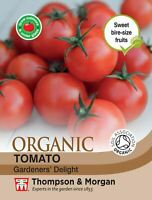 Thompson & Morgan - Tomato Gardeners Delight (Organic) - 25 Seeds