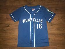 NEW NICE Asheville Tourists 2018 SGA Baseball Jersey Youth Large L NEW Blue