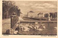 BG36753  munchen Schwan swan schlosspark   germany