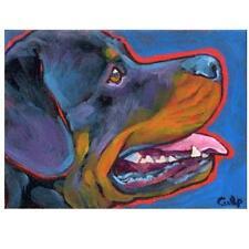 Rottweiler Profile Print 8x10 by Lynn Culp (Lc025) - Free Shipping