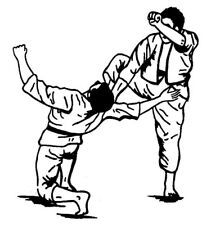 Kenpo/Kung Fu San Soo/Jujitsu/Karate Books/Kempo/Hapkido/Taekwondo/Self Defense