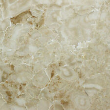 Cappuccino Polished Marble Wall & Floor Tiles - Sample