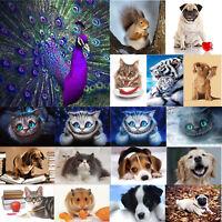 Cute Dog Cat 5D DIY Diamond Painting Embroidery Needlework Set Cross Stitch Art