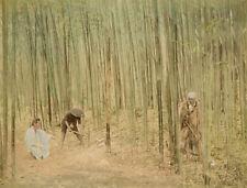 Photo Albuminé Japon Japan Fôret de Bambou Vers 1880