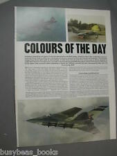 1980 article Royal Air Force aircraft, painting camo, from UK RAF magazine