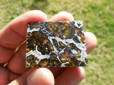 20.8 gram ADMIRE meteorite SLICE - STABLE/ BEAUTIFUL Guaranteed