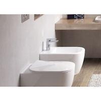 Tavoletta WC Coprivaso Originale Frizionato per modello Faster - Cerniere Cromo