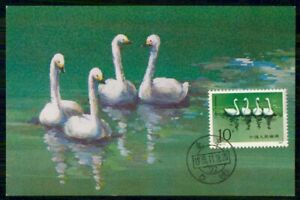 Mayfairstamps CHINA FDC 1983 MAXIMUM CARD SWANS STAMP wwk3451