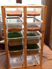 Fodder System,  Wheat Fodder , Barley Fodder, Chickens Etc.