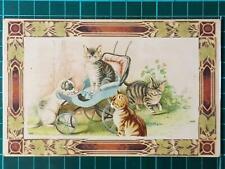 1900`s Antique Art Fantasy Greetings Cute Postcard Cats on Meeting Fantastic
