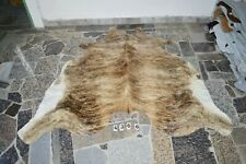 BRINDLE EXOTIC-  Rug HAIR ON SKIN  Leather cowhide 4366-   73'' x  70''