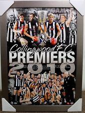 COLLINGWOOD 2010 PREMIERS AFL TEAM PRINT FRAMED - PENDLEBURY SWAN