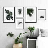 Tropical Plant Leaf Cactus Canvas Poster Art Print Modern Nordic Home Decoration