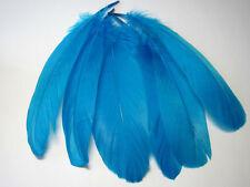 Select Goose Shoulder Feathers - Blue