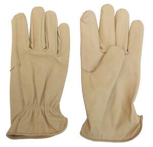Indiana Jones Adventure Gloves