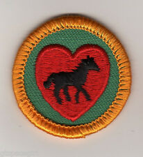 Horse Lover~Retired Girl Scouts Junior Badge Patch~1980-1999~Yellow Border