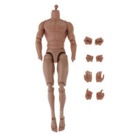 1/6th Scale Flexible Action Figure Male Body With Spare Hands for TTM19 Hot Toys