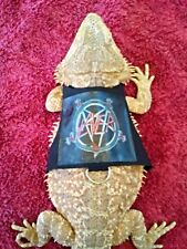 Lil' Bestie Bearded Dragon reptile Harness and Leash SLAYER