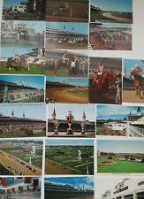 Various Vintage Churchill Downs & Kentucky Derby Horse Racing Postcards