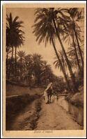 ARABIEN AFRIKA Wüste Oase Oasis Fluss Araber Palmen Vintage Poscard AK ~1925