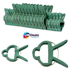 SMALL & LARGE Plastic Garden Plant to Cane Support CLIPS Sprung Spring Ties 20pc