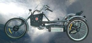 Custom Made Pedelec Trike Cart 3-Wheeler Dreirad 20 Zoll Elektrovorderradmotor