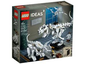 LEGO 21320 - Fossili di dinosauro