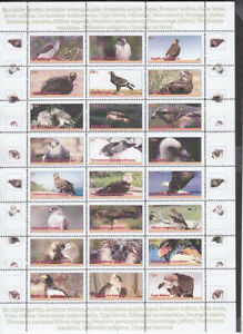 EAGLES   - 144 !!!  stamps FULL SET  private issue LIMITED EDITION!!
