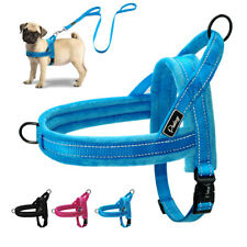 No Pull Front Clip Dog Harness & Lead Set Reflective Plush Padded Pet Vest S M L