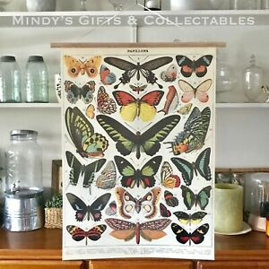 70cm Vintage Cavallini Butterfly Butterflies Poster Print Linen Paper Wall Art