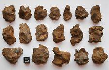 Meteorit / Meteorite - Sericho Individuals  -  501 g !!!