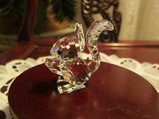 Swarovski Squirrel Large Var.1 - Retired - Box / Coa - Mint