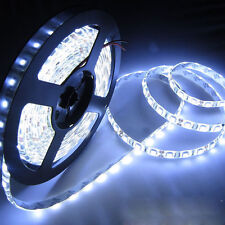 Bright 5M 5050 Day White 300 LED Light Flexible Strip Lighting 12V Party Garden