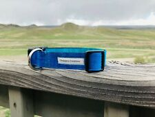 """Ombre-Lagoon Dog Collar 1"""" Side Release Buckle Large (fits 15""""-24"""")"""