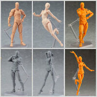 Male/Female Action Figma Archetype Figure Body Toy For Cartoon Drawing
