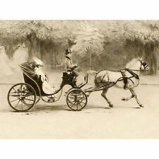 Edgar Chahine Victoria 1907 Woman Horse Carriage Large Wall Art Print 18X24 In