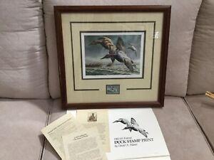 1982 Canvasbacks Federal Duck Stamp & Print David A. Maass Framed & Signed