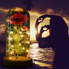 WR La bella y la bestia Rose Glass Dome Regalo iluminado del día de la madre
