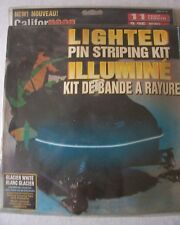 Simulated Neon Electric Lighted Pin Stripping Kit for Snowmobiles 11 Feet Long