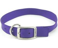 "HAMILTON ST Nylon Dog Collar, 26"" x 1"", Purple"