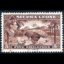 Sierra Leone 1938-44 5s Red Braun Sg 198. Guter Zustand Verwendet. (AR473)