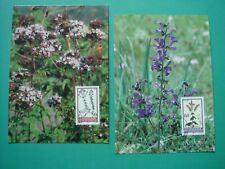 Liechtenstein Maximumkarten Nr. 119 Magerwiesenblumen 1993 (4 Karten)